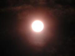 sun 022