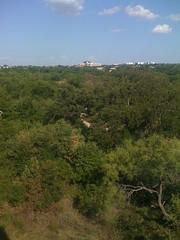 The Preserve at Arbor Hills