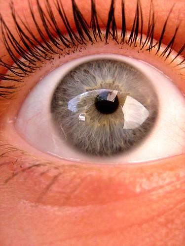 (my) eye
