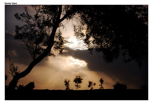 trees light sunset sky plants cloud sun tree sunshine clouds israel telaviv nikon view god magic horizon silhouettes divine rays skyplay dush intervention d40 colorphotoaward impressedbeauty
