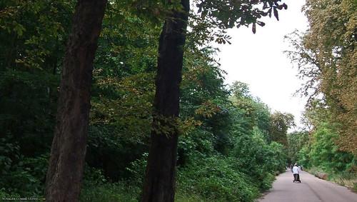 Maman promenant son bébé en poussette au bois de Vincennes