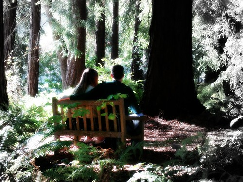 Married Couple on a Park Bench