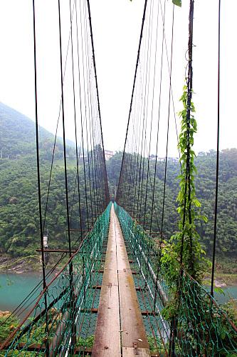Z822義興吊橋