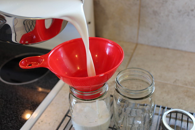 Pour Coconut Yogurt into Prepared Jars