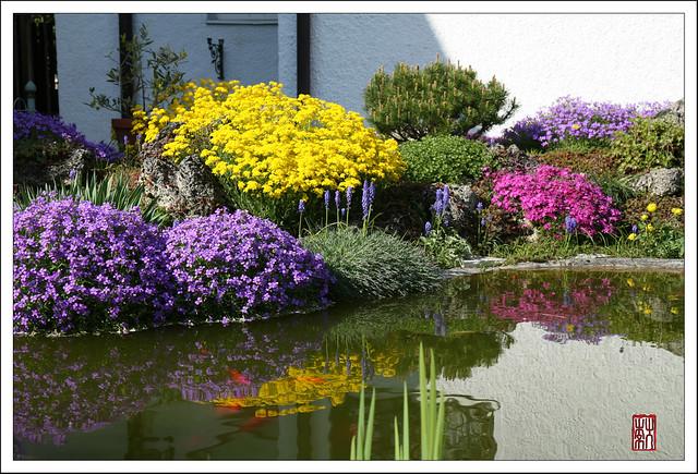 """Neighbour's """"Private"""" Garden/邻居的私家花园"""