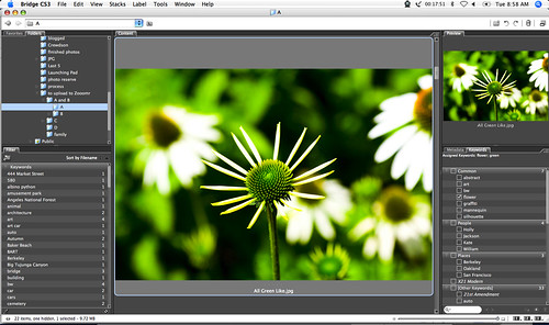 free photo software