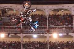 freestyle motocross, vehicle, sports, motorsport, motorcycle racing, stunt performer, stunt,