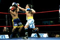 striking combat sports, professional boxing, individual sports, contact sport, sports, combat sport, muay thai, shoot boxing, sanshou, punch, boxing,