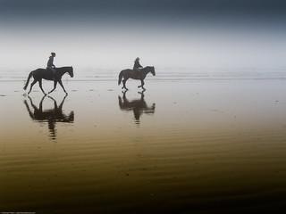 Two equestrian riders, girls on horseback, in low tide reflections on serene Morro Strand State Beach - 無料写真検索fotoq