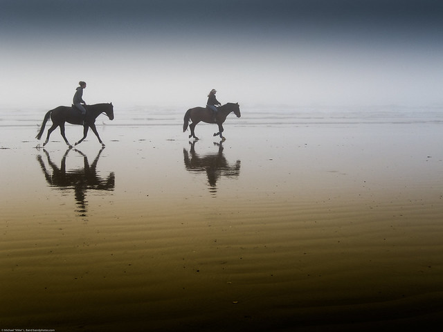 Two equestrian riders, girls on horseback, in low tide reflections on serene Morro Strand State Beach