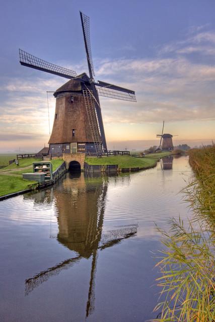 Windmills Reflected