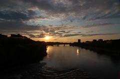 Pavia 08