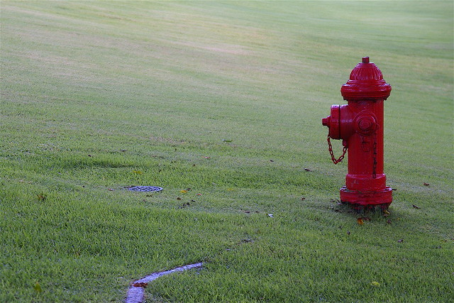 red hydrant on green slope