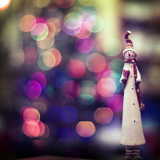 i'm back, and with some holiday bokeh :)