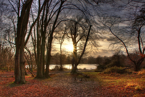 Hatfield Forest, Essex, UK