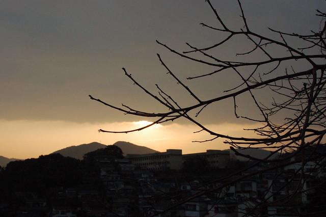 Photo:DSC_02436816 By:Marufish