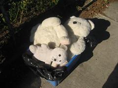 sheep(0.0), pet(0.0), giant panda(0.0), teddy bear(1.0), textile(1.0), stuffed toy(1.0), bear(1.0), toy(1.0),