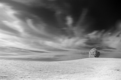 trees sky tree clouds landscape outdoor scenic northcarolina infrared