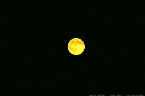 harvest moon    MG 0832