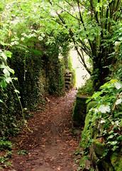 Philosophenweg (Philosophers' Path)