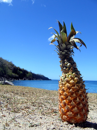 Pineapple on da beach