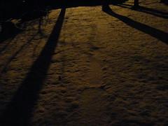 Snow Sparkles 5