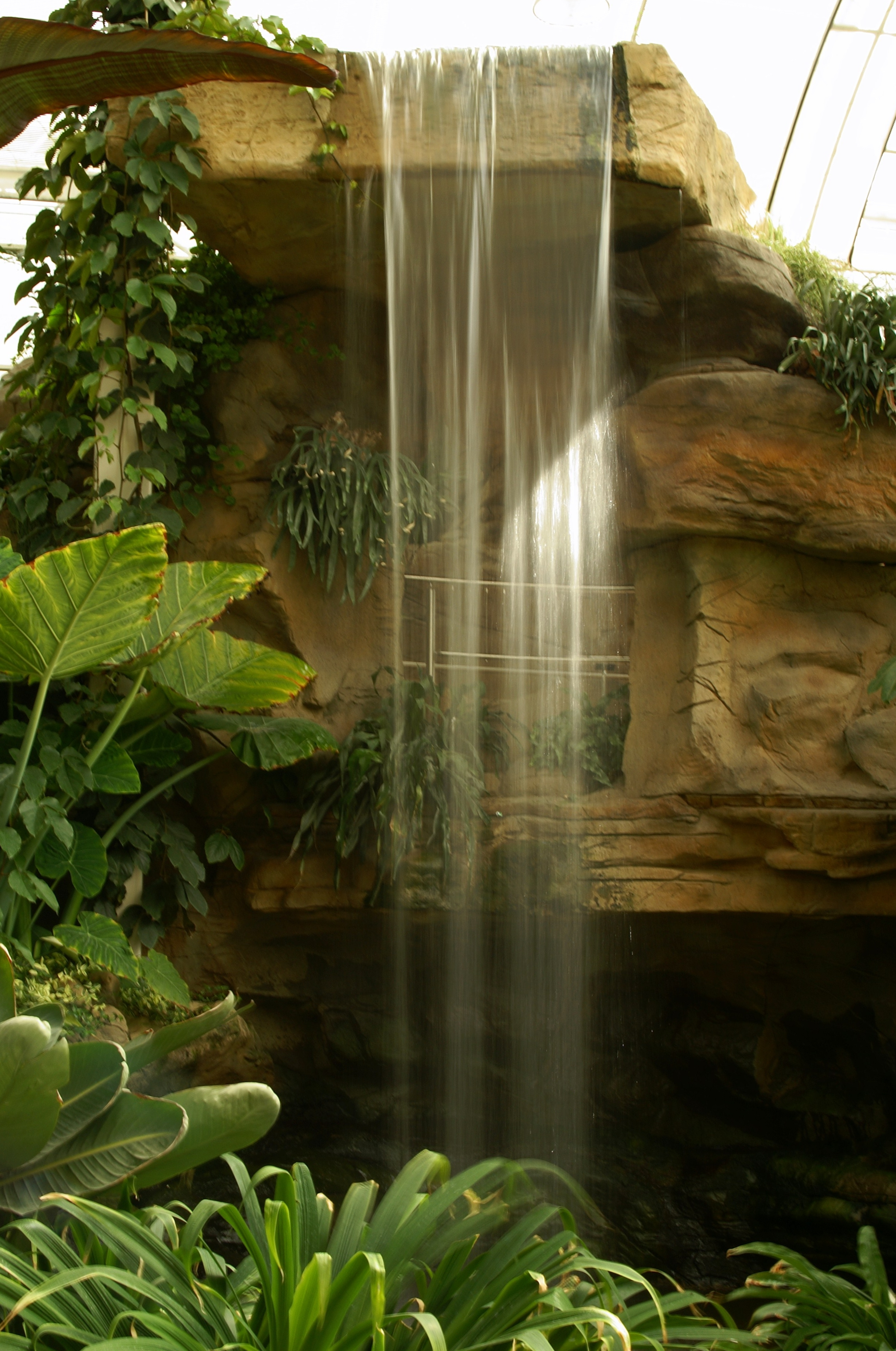 Glass house waterfall home design online for Glass waterfall design