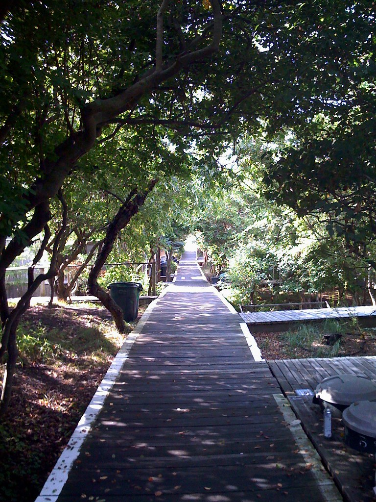Cherry Grove Boardwalk
