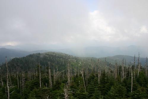 Clingmans Dome view