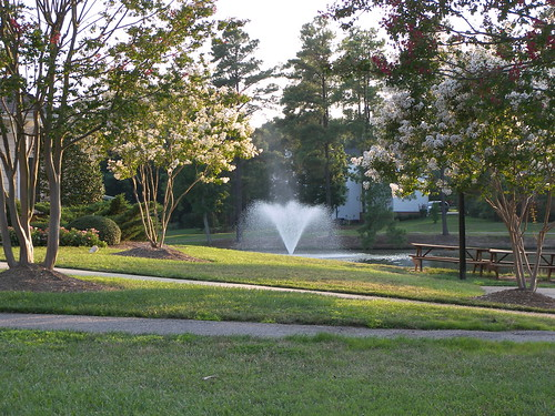 Cary Nc Real Estate Neighborhoods With Ponds And Fountains