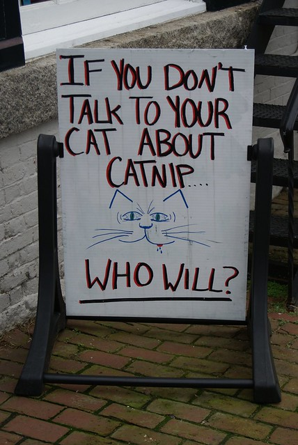 If you don't talk to your cat about catnip... Who Will?