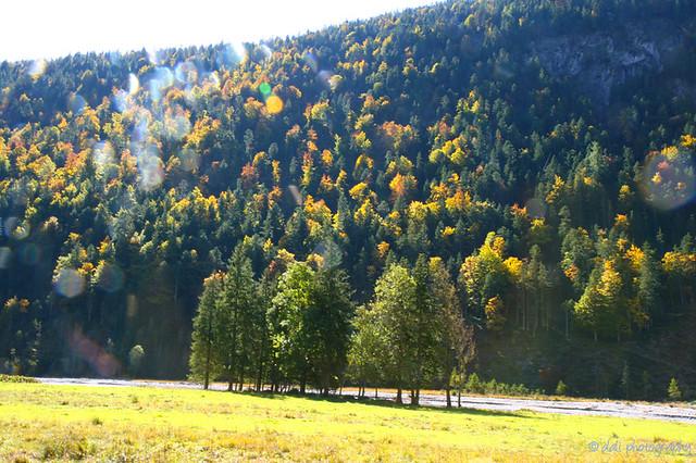 Alpenpark Karwendel