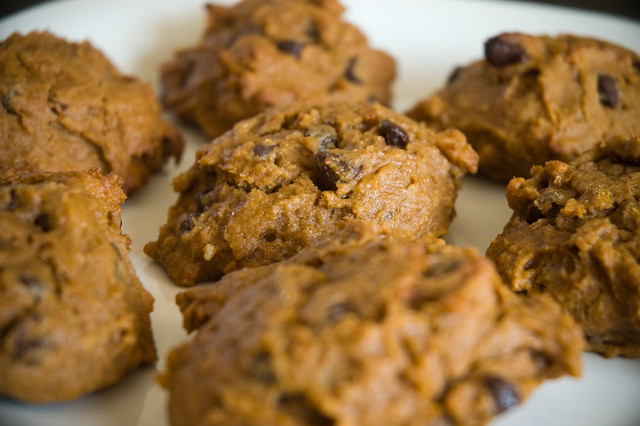 Pumpkin Chocolate Chip Cakies