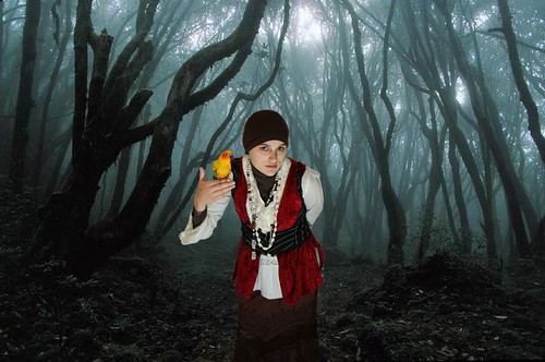 Cara Pirate In The Woods