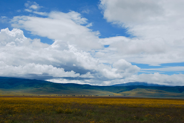 Vista del cráter del Ngorongoro, Tanzania.