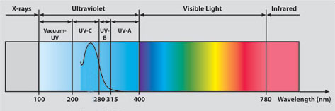 How do black UV lights work Explore #2: b86bc o