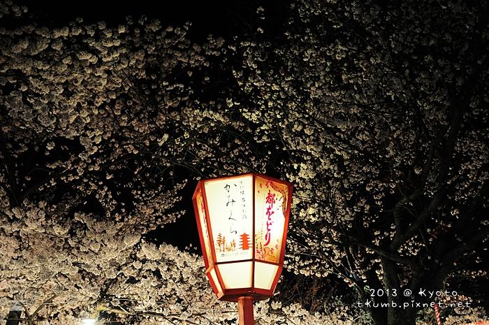 円山公園 (1).jpg