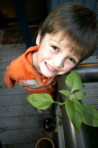 kinder gardener    MG 0375