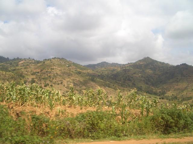 Kenya 085
