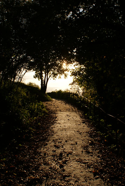 (The Path) From Sorrow to Heaven