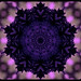 Happy Perfect Purple Saturday!  Explore on 2008-11-08   #53 !! by Terri (I.hope.you.dance)