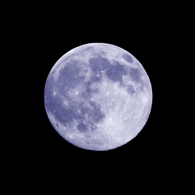 The Blue Moon Restaurant Kitchener