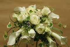 カラーのブーケ(Bouquet of calla)