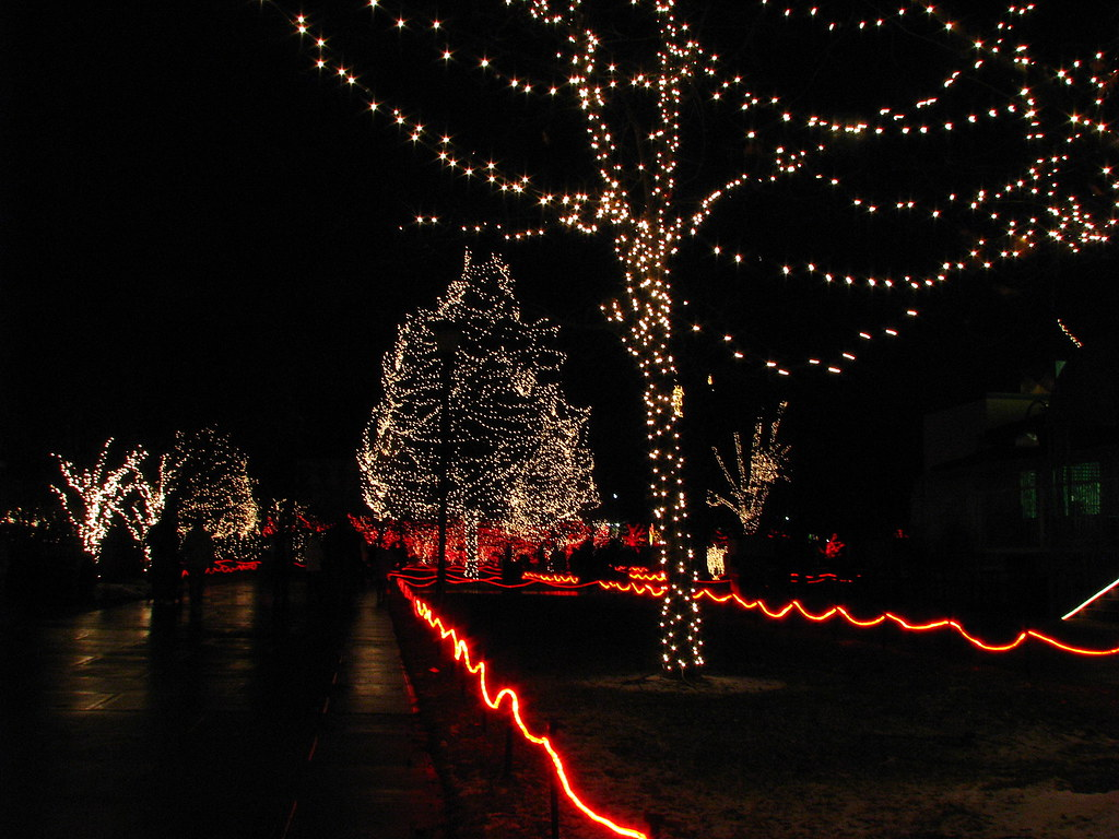 The Lights Before Christmas.Lights Before Christmas The Lights Before Christmas At T