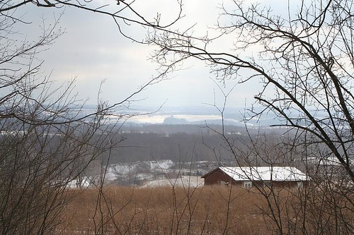 snow woods scenery view winterhike thechalet