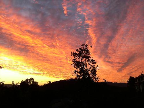 sunset australia queensland goldcoast oxenford gavenheights terracesonthepark gertstobbephoto 99gfavsj7
