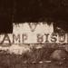 Burwash Correctional Centre - Camp Bison (V)