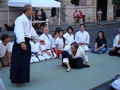 aikido, individual sports, contact sport, sports, combat sport, martial arts, japanese martial arts,