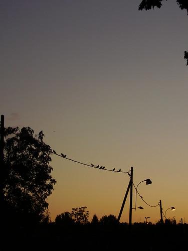 sky sun sunrise croatia zagreb izlazaksunca