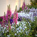 Mesa Arizona Temple, Foxgloves and Petunias by Altus Photo Design